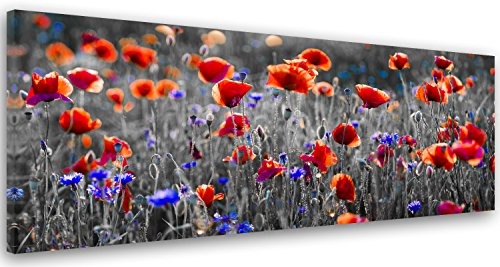 Feeby. Tableau Déco, Impression sur Toile, Décoration Murale, Image imprimée, 120x40 cm, Coquelicot, Nature, Rouge