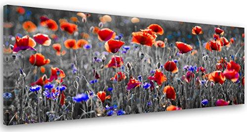 Feeby. Tableau Déco, Impression sur Toile, Décoration Murale, Image imprimée, 120x40 cm,...