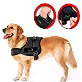 LIFEPUL No Pull Dog Vest Harness - Dog Body Padded Vest - Comfort Control for Large Dogs in Training Walking - No More Pulling, Tugging or Choking (L)