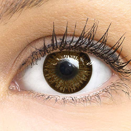 GLAMLENS lentillas de colores marrones Choco + contenedor. 1 par (2 piezas) - 90 Días - Sin Graduación - 0.00 dioptrías - blandos - Lentes de contacto marrón de hidrogel de silicona