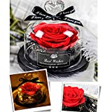 sbfwh Schönheit und Das Biest Rot Rose Enchanted Rot Seide Rose und LED-Licht mit Fallen Petals in...
