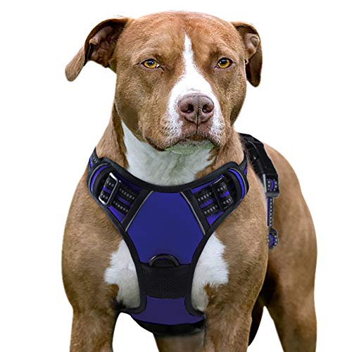 Eagloo Dog Harness No Pull, Walking Pet Harness with 2 Metal Rings and Handle Adjustable Reflective Breathable Oxford Soft Vest Easy Control Front Clip Harness Outdoor for Large Dogs Blue