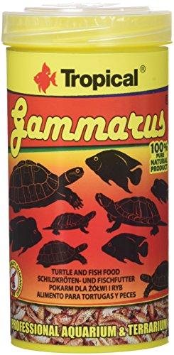 TROPICAL gammarus Nourriture pour aquariophilie 250ML–Lot de 4