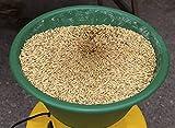 Elektrische Getreidemühle, 600 W – Getreide selber mahlen - 4