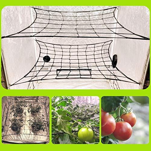 MEGALUXX 2-PK Dual Layer Grow Netting for 4x4 5x5 4x2 Grow Tents (2 Pack) - Grow Net Trellis Netting Grow Tent Net