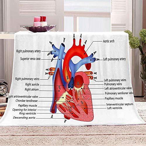 tjxu Manta de Franela Lana 3D corazón Manta De Sofá De Franela Suave Impresa En 3D para sofá y Cama 70 X 100 CM