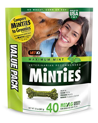 VetIQ Minties Dog Dental Bone Treats, Dental Chews for Dogs, (Perfect for Medium/Large Dogs Over 40 Lbs)
