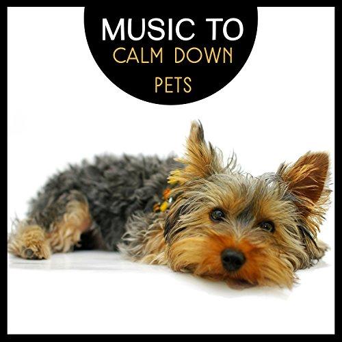 Mellow Sounds to Comfort