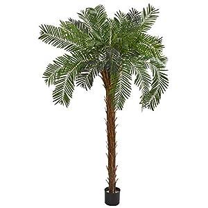 Silk Flower Arrangements Nearly Natural 7' Cycas Palm Artificial Silk Trees, Green