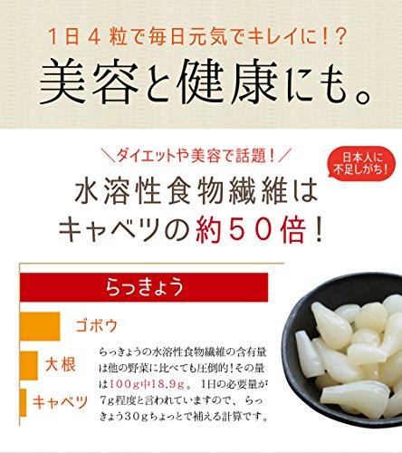 九州オーガニックメイド 九州産 国産 らっきょう漬け甘酢 90g 固形量 5袋