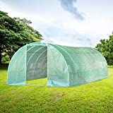 Best Greenhouse Kits - Aoxun 26'x10'x7' Large Walk-in Garden Greenhouse,Tunnel Greenhouse Review