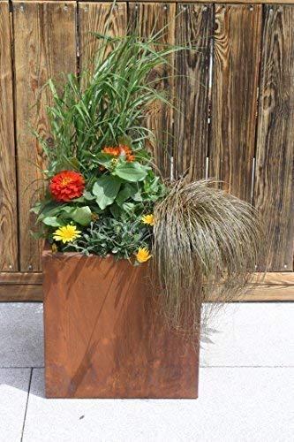 Rostikal Pflanzkübel, Pflanztrog in Edelrost zum direkt beflanzen, 38 x 38 x 38cm