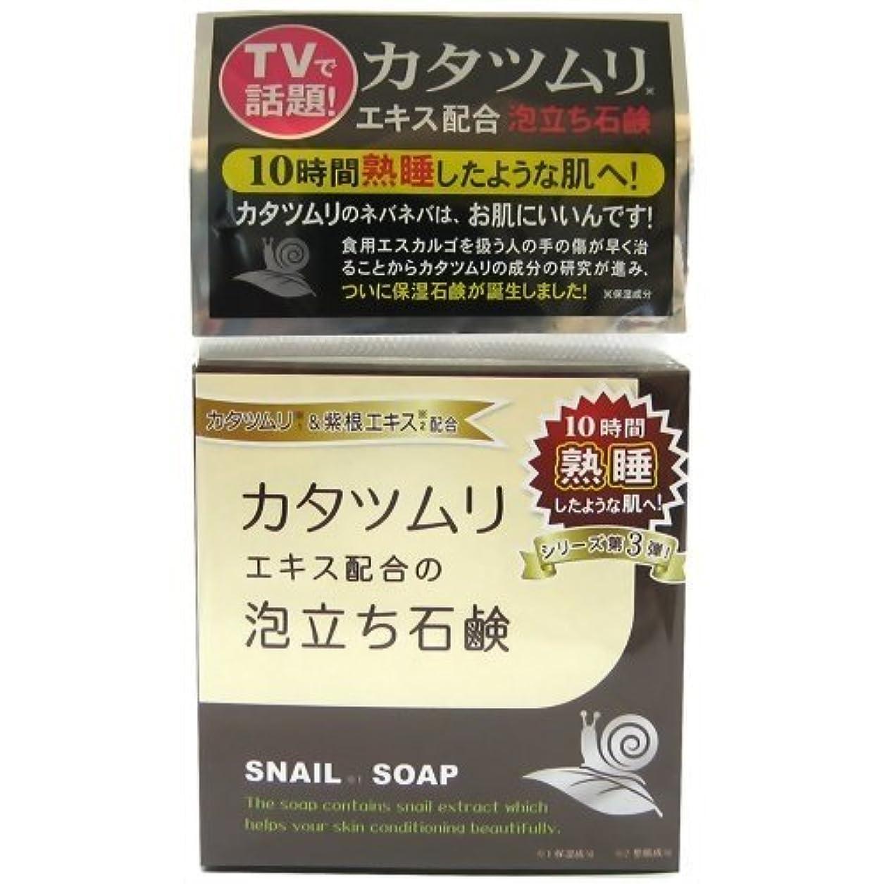チップ過敏なインストールカタツムリ石鹸 100g