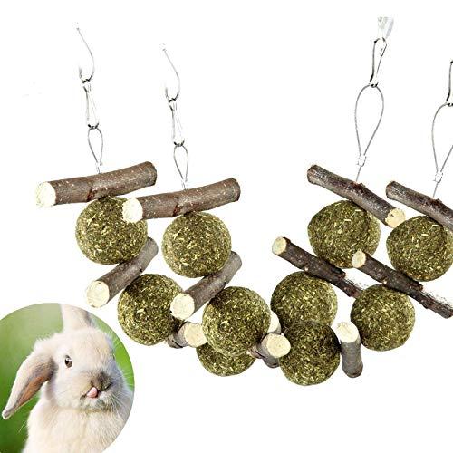 PETLAOO Bunny Chew Toys for Teeth, Improve Dental Health - 100% Natural Organic Apple Sticks - Handmade, Suitable for Rabbits, Chinchillas, Guinea Pigs, Hamsters, Chewing/Playing (2 PCS)