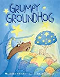Grumpy Groundhog Children's Book