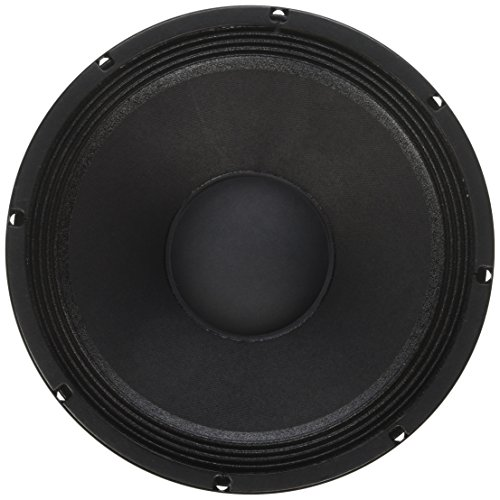 12 inch speaker cone - 8