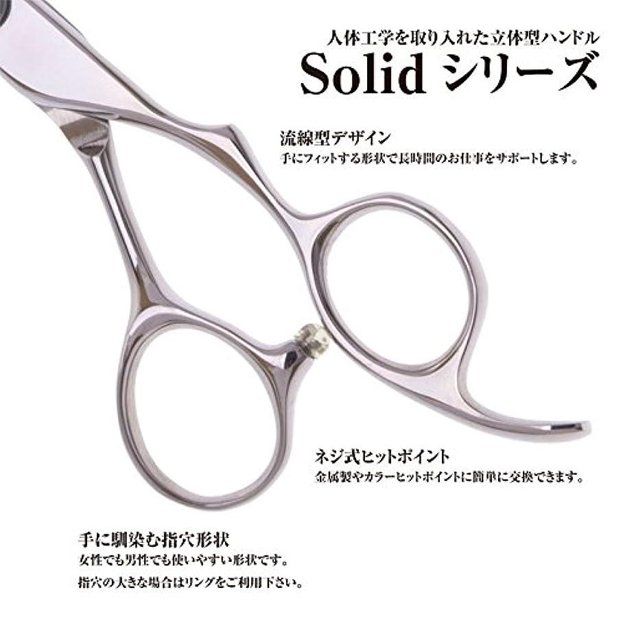 Basic scissors Solid シザー 600 / 美容師 理容 理容師 散髪 はさみ シザー