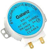LNIEGE SM-16T AC 30V 3.5 / 4W 5 / 6RPM Motor síncrono Giratorio para Horno de microondas