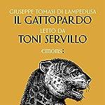 Il Gattopardo copertina