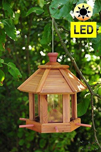 Futterhaus ZedernHolz – MIT Beleuchtung,LED-Licht / Premium Vogelhaus (TEAK) DUNKELBRAUN,BEL-dbraun groß, Vogelhaus mit XXL- Silo + Anflughilfe,WETTERFEST, Holz futterhaus für Vögel,mit Vogelfutter-Station Farbe braun dunkelbraun schokobraun rustikal klassisch,Ausführung Naturholz MIT WETTERSCHUTZ-DACH für trockenes Futter - 8