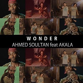 Wonder (feat. Akala)