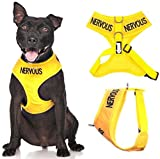 Nervous Yellow Color Coded Waterproof Padded Adjustable Non Pull Front and Back Ring Alert Warning Medium Vest Dog Harness Prevents Accidents By Warning Others of Your Dog in Advance
