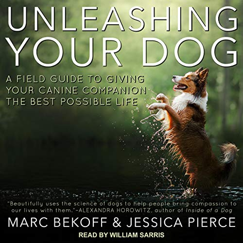 Unleashing Your Dog cover art