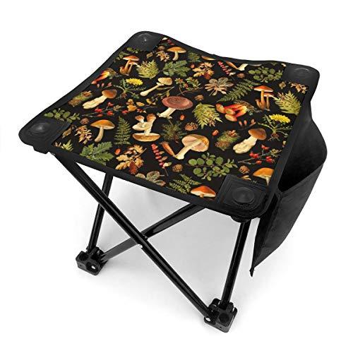 DCOCY Campinghocker, Vintage, Shabby-Chic, Herbsternte, schwarz, Klappstuhl, tragbar, Campinghocker, Angelhocker, 30,5 cm