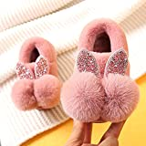 Zapatillas De Casa para Mujer Cerradas,Zapatillas De AlgodóN Interior De OtoñO E Invierno para NiñOs, NiñOs Y NiñAs Bolsa De Dibujos Animados De Conejo Lindo RaíCes Antideslizantes Zapatos De Giro-La