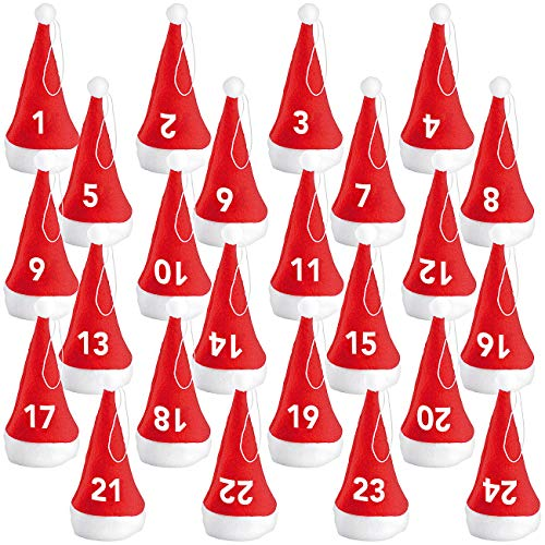 Infactory Advent Calendar with 24 Santa-Sprout...