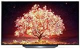 LG OLED55B19LA TV 139 cm (55 Zoll) OLED Fernseher (4K Cinema HDR, 120 Hz, Smart TV) [Modelljahr...