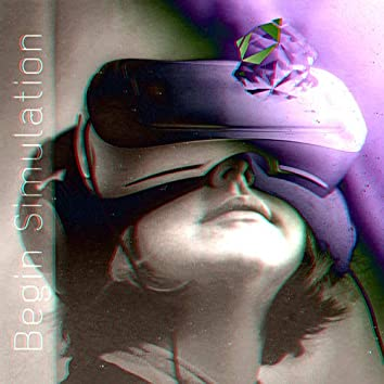 Begin Simulation
