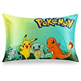 Pillowcase 20 x 30 inches,Double-Sided Printed Pillow Cover, Zippered Pillow Case-1 Pack-PKQ1