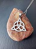 Colgante celta con el símbolo de la triqueta de acero inoxidable, Colgante de protección, Druida, Símbolos sagrados, Símbolo del trisquel, Regalo celta, Amuleto, Triketa, Nudo celta, regalo hombre