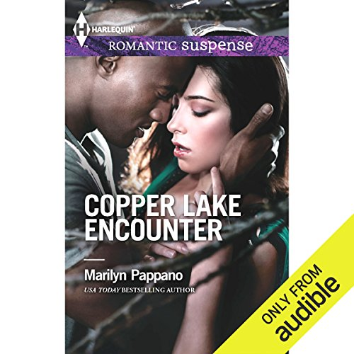 Copper Lake Encounter audiobook cover art