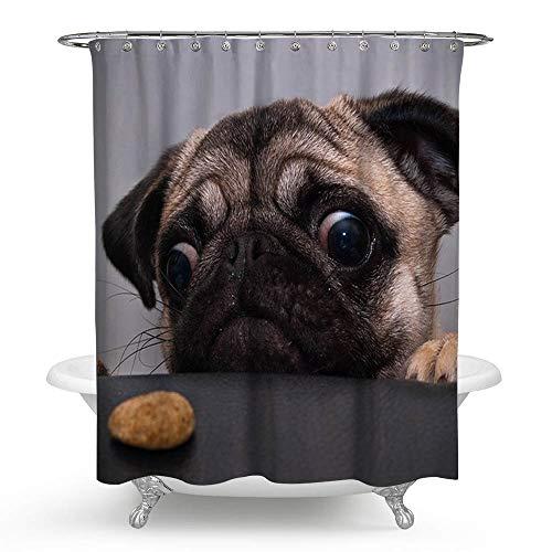 kisy Cartoon Mops Hund Stoff Bad Duschvorhang Antischimmel-wasserabweisend Quick Dry 180cm x 180cm für Badezimmer mit 12Plactic Haken