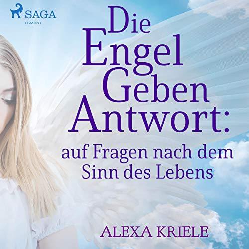 Die Engel geben Antwort auf Fragen nach dem Sinn des Lebens Titelbild