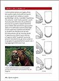 Zoom IMG-2 cavallo il manuale completo 1