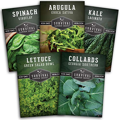 Survival Garden Seeds Greens Collection Seed Vault - Non-GMO Heirloom Survival Garden Seeds for Planting - Waterproof Packaging for Long Term Storage