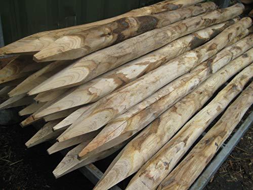Pflanzenfuchs® Staketenzaunpfahl Zaunpfahl aus Kastanienholz - Handw. Qualitätsarbeit - Verschiedene Größen (6cm x 160cm)
