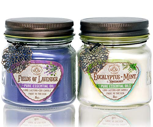 Way Out West Candles Aromatherapy Candle Set | Stress Relief Gifts for Women & Candle Gift Set for Mom | Long Burning, Natural Soy | Eucalyptus & Lavender Essential Oils | Medium 2 Pack Made in USA