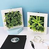 2 piezas de plantas artificiales, plantas artificiales para colgar en la pared en 3D, plantas artificiales con marco blanco, flores artificiales para plantas suculentas, arte decorativo para pared