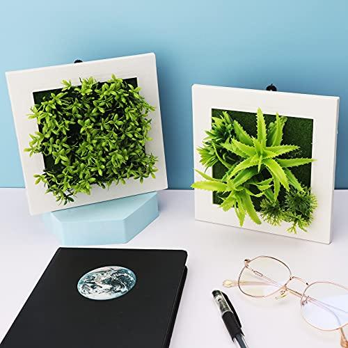 2 Pcs Plantes Artificielles Artificielles 3D Tenture Murale Plantes Atificielles avec Cadre Blanc Plante Succulente Artificielle Fleurs Décoratif Mur Art Faux Plantes Verdure pour DIY Décorations