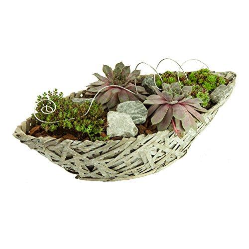 Pajubo - Vaso per piante, motivo nave, lunghezza 30 cm, colore: Bianco