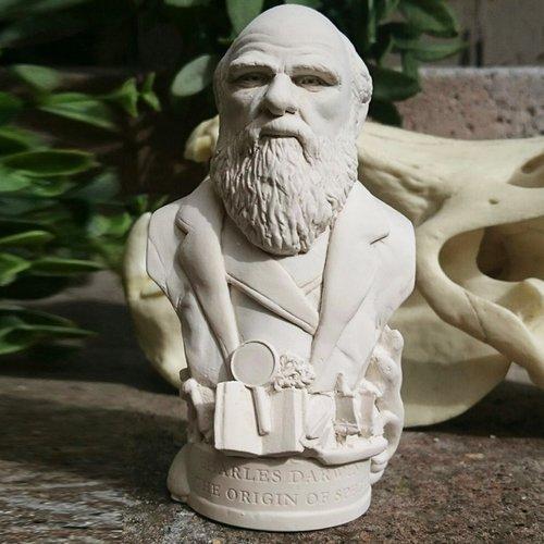 Charles Darwin Brustumfang Skulpturen Handgefertigt in Großbritannien von Putz. Charles Darwin Figur