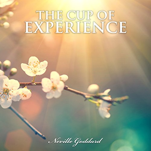 The Cup of Experience audiobook cover art