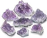 BedRock Rough Natural Stones and Crystals Bulk (Set of 12, Amethyst)