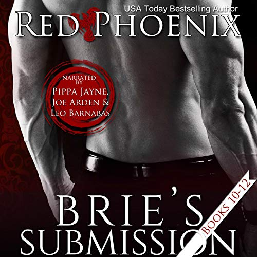 Brie's Submission audiobook cover art