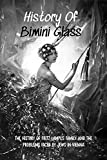 History Of Bimini Glass: The History Of Fritz Lampl's Family And The Problems Faced By Jews In Vienna: Bimini And Orplid Glass Items (English Edition)