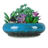 ARTKETTY 7.3 inch Round Succulent Planter Pots with Drainage Hole Bonsai Pots Garden Decorative Cactus Stand Ceramic Glazed Flower Container Bowl (Blue)
